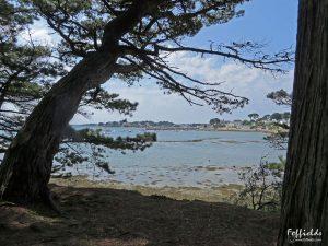 L'île de Berder