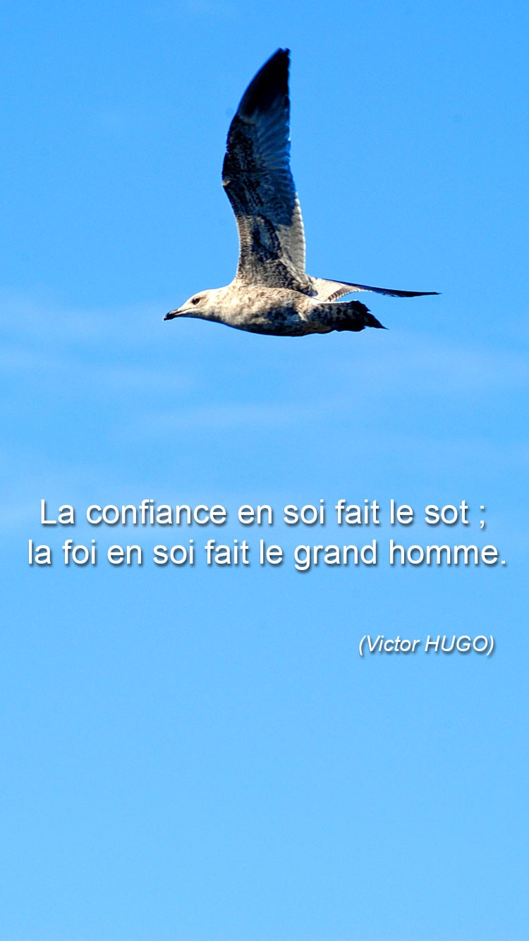 Citations Confiance en soi