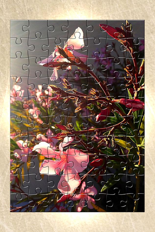 Im_Vertical-Puzzle-Frame-Com