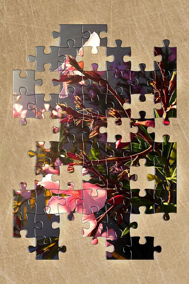 Im_Vertical-Puzzle-Frame