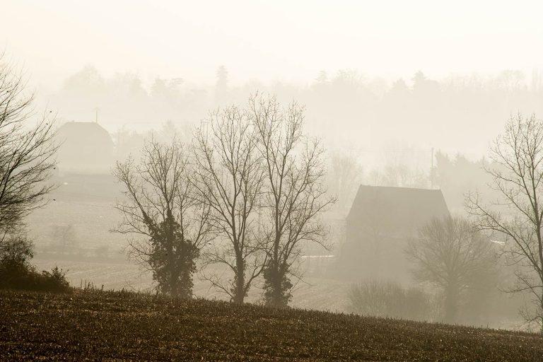 04 - Paysages dans la brume en automne