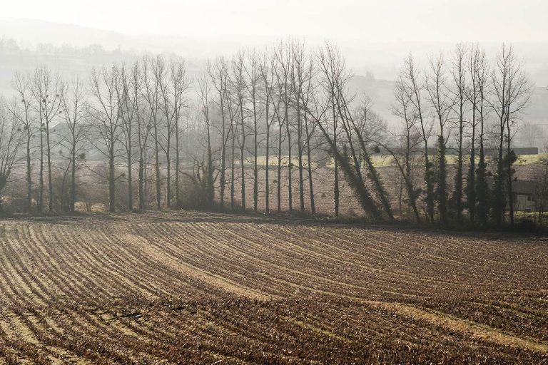 06 - Paysages dans la brume en automne